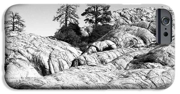 Prescott Arizona iPhone Cases - Willow Lake Number One BW iPhone Case by Heather Kirk