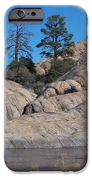 Willow Lake Number One Color iPhone Case by Heather Kirk
