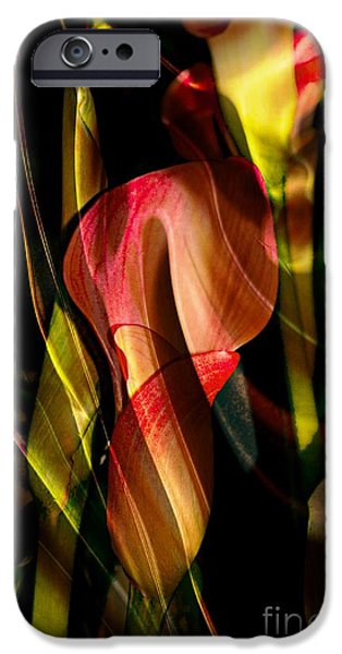 Abstract Digital iPhone Cases - Wild Abstract iPhone Case by Kathleen Struckle