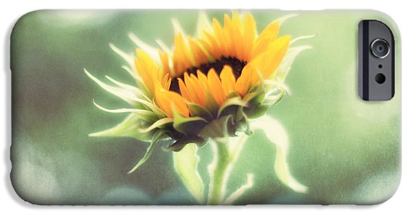 Sunflowers Photographs iPhone Cases - Wild and Free iPhone Case by Amy Tyler
