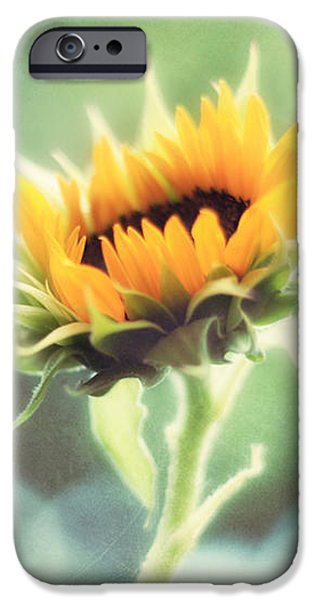 Wild and Free iPhone Case by Amy Tyler