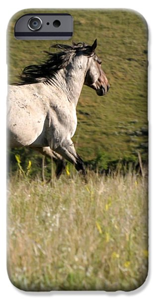 Wild Appaloosa Running away iPhone Case by Sabrina L Ryan
