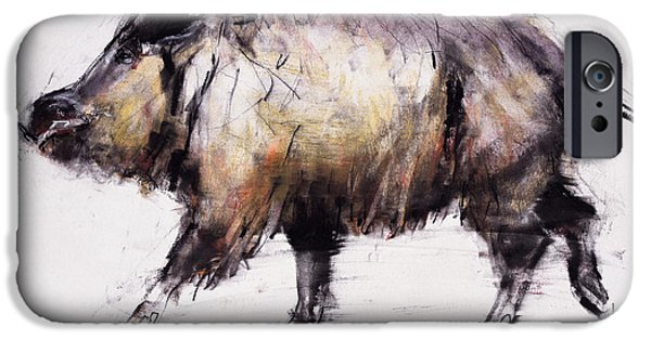 Tusk iPhone Cases - Wild Boar, 1999 Graphite, Conte And Charcoal On Paper iPhone Case by Mark Adlington