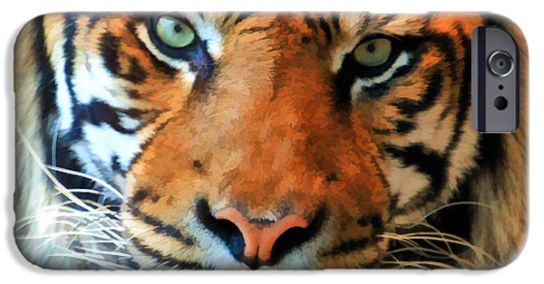 The Tiger iPhone Cases - Wild Cat iPhone Case by Athena Mckinzie