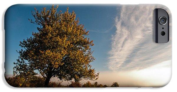 Autumn Landscape Photographs iPhone Cases - Wild Cherry iPhone Case by Davorin Mance