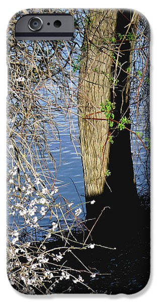 Spring Greening iPhone Cases - Wild Cherry Tree on the Sacramento River  iPhone Case by Pamela Patch