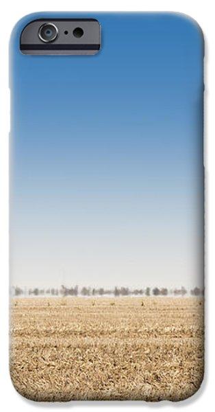 Wild Emus iPhone Case by Tim Hester