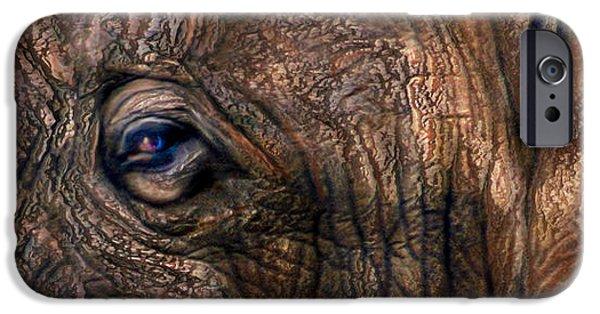 Elephants Mixed Media iPhone Cases - Wild Eyes - African Elephant iPhone Case by Carol Cavalaris