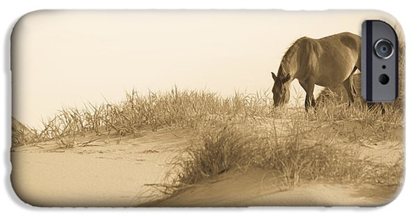 Sand Dunes iPhone Cases - Wild Horse iPhone Case by Diane Diederich