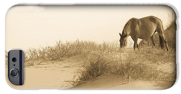 Animals Photographs iPhone Cases - Wild Horse iPhone Case by Diane Diederich