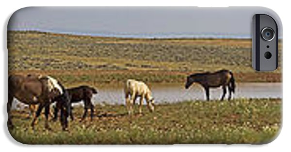 The Horse iPhone Cases - Wild Horses At The Water Hole #3 iPhone Case by J L Woody Wooden