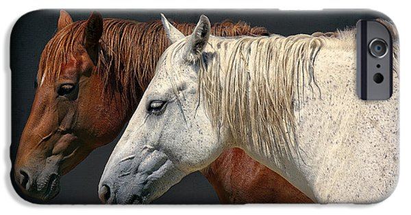 Horse Racing iPhone Cases - Wild Horses iPhone Case by Daniel Hagerman