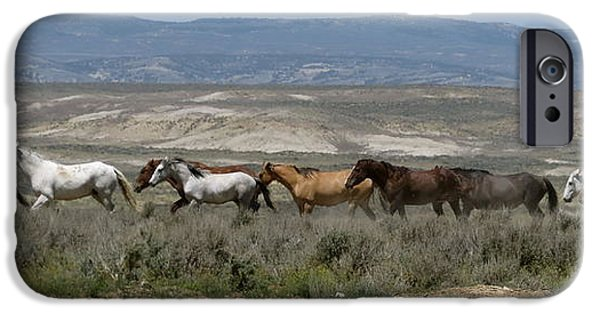 The Horse iPhone Cases - Wild horses running iPhone Case by Darlene Grubbs