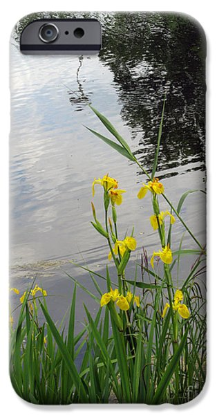 Wild Iris By The Pond iPhone Case by Ausra Paulauskaite