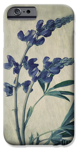 Flora Photographs iPhone Cases - Wild Lupine iPhone Case by Priska Wettstein