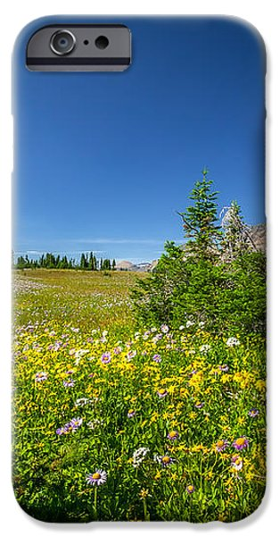 Wild Mountain Flowers Glacier National Park   iPhone Case by Rich Franco