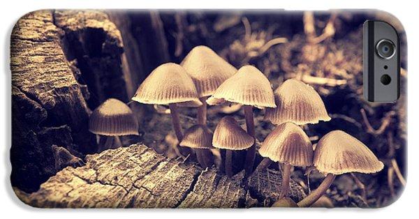Mushroom iPhone Cases - Wild Mushrooms iPhone Case by Amanda And Christopher Elwell