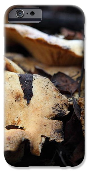 Wild Mushrooms On The Forest Floor - 5D21078 iPhone Case by Wingsdomain Art and Photography