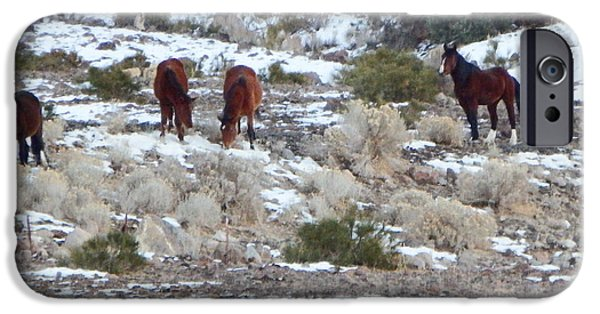 Horse iPhone Cases - Wild Mustangs in a Nevada Winter iPhone Case by Bobbee Rickard