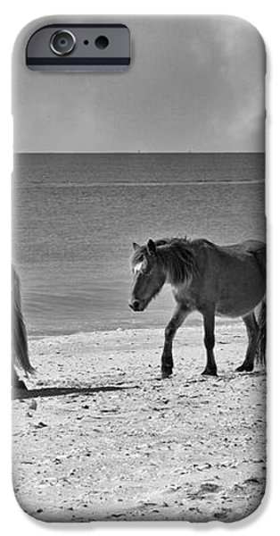 Wild Mustangs of Shackleford iPhone Case by Betsy A  Cutler