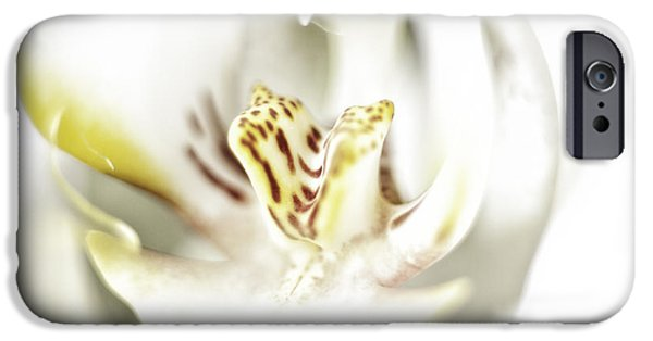Phalaenopsis iPhone Cases - Wild Orchid iPhone Case by Erik Brede