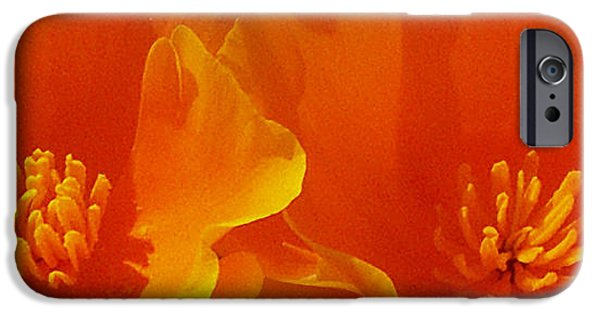 Best Sellers -  - Floral Digital Art Digital Art iPhone Cases - Wild Poppies iPhone Case by Ben and Raisa Gertsberg