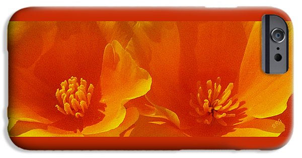 Flora iPhone Cases - Wild Poppies iPhone Case by Ben and Raisa Gertsberg