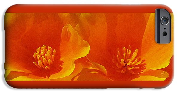 Brg iPhone Cases - Wild Poppies iPhone Case by Ben and Raisa Gertsberg