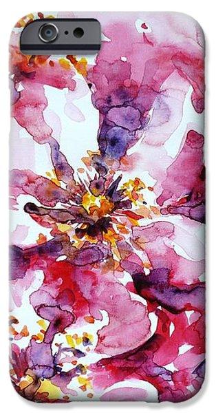 Wild Rose iPhone Case by Zaira Dzhaubaeva
