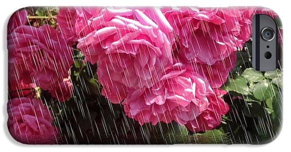 Raining Pyrography iPhone Cases - Wild Roses in the Rain iPhone Case by Gabriella Weninger - David