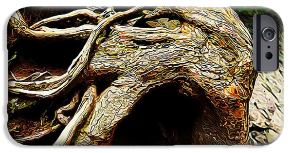 Tree Roots iPhone Cases - Wild Tree Spirit iPhone Case by Bill Caldwell -        ABeautifulSky Photography