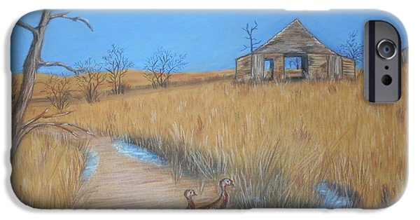Old Barns Pastels iPhone Cases - Wild Turkeys iPhone Case by Charlyn LeJeune