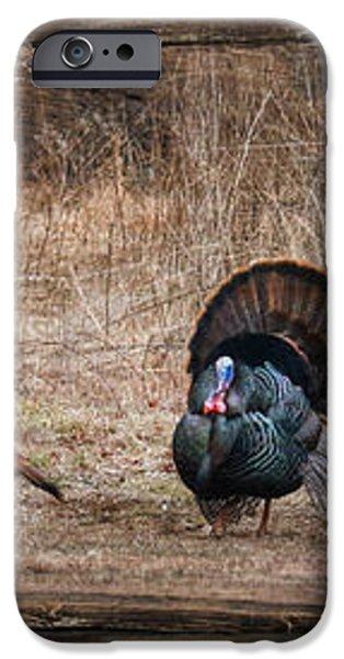 Wild Turkeys iPhone Case by Lori Deiter
