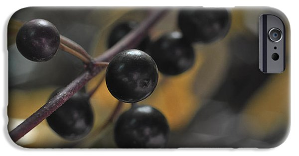 Berry Pyrography iPhone Cases - Wildberry iPhone Case by Chris Hoffensetz