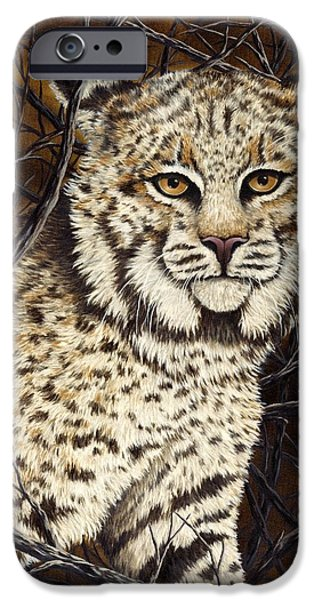 Bobcats iPhone Cases - Wildcat iPhone Case by Rick Bainbridge
