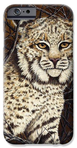 Bobcats Paintings iPhone Cases - Wildcat iPhone Case by Rick Bainbridge