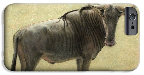 African Animal Drawings iPhone Cases - Wildebeest iPhone Case by James W Johnson