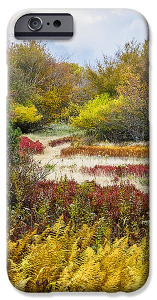 Sod iPhone Cases - Wilderness Garden Dolly Sods West Virginia iPhone Case by Bill Swindaman