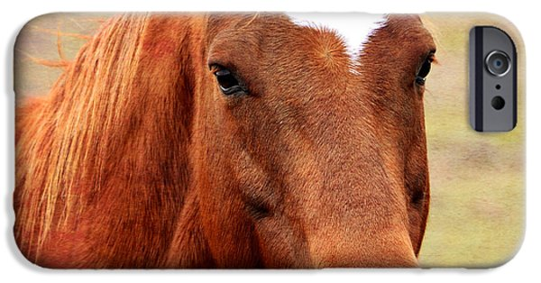 Horse iPhone Cases - Wildfire - Equine Portrait iPhone Case by Deena Stoddard