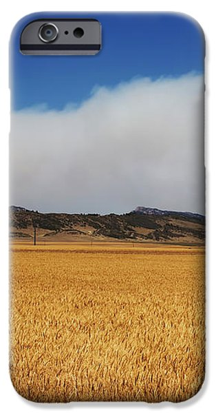 Wildfire iPhone Case by Jon Burch Photography