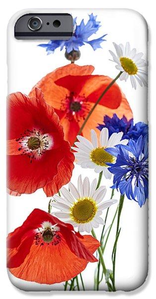 Flower Design Photographs iPhone Cases - Wildflower arrangement iPhone Case by Elena Elisseeva