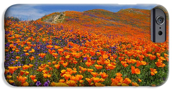 Santa iPhone Cases - Wildflower Jackpot iPhone Case by Lynn Bauer