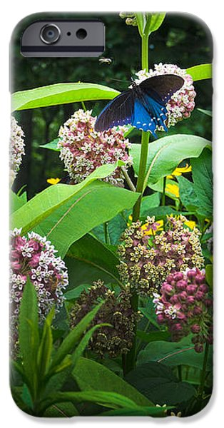 Wildflower Meadow iPhone Case by Kenneth Murray