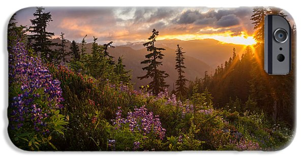 North Cascades iPhone Cases - Wildflower Meadows Sunstar iPhone Case by Mike Reid