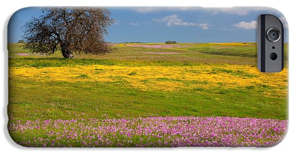 Field. Cloud iPhone Cases - Wildflowers and Oak Tree - Spring in Central California iPhone Case by Ram Vasudev