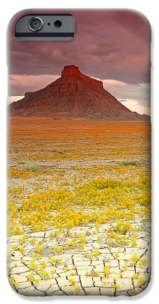 Dry Lake iPhone Cases - Wildflowers at Factory Butte. iPhone Case by Johnny Adolphson
