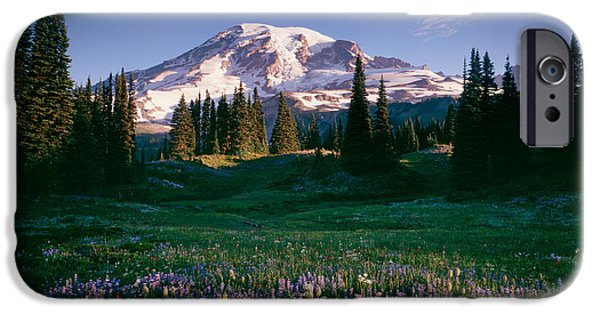 Rainy Day iPhone Cases - Wildflowers At Mt Rainier, Mt Rainier iPhone Case by Panoramic Images