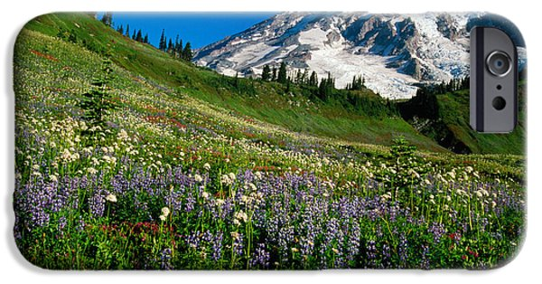 Rainy Day iPhone Cases - Wildflowers Blooming In Front Of Snowy iPhone Case by Panoramic Images
