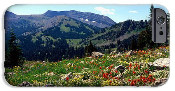 Mountain iPhone Cases - Wildflowers In A Field, Rendezvous iPhone Case by Panoramic Images