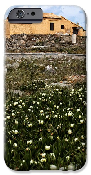 Delos iPhone Cases - Wildflowers in Delos iPhone Case by John Rizzuto